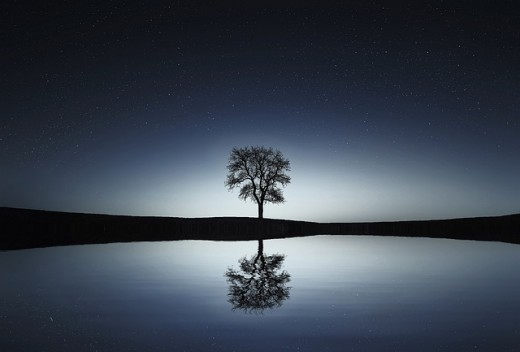 Mind Is Reflection Of What You Want To Be