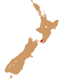 Where Wellington is located in New Zealand
