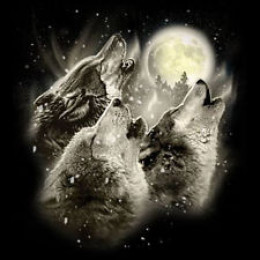 T shirt print: Wolves howling at the moon