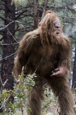 Bigfoot, also called Sasquatch