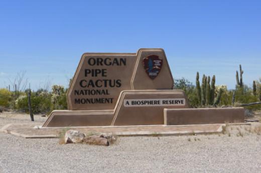 Organ Pipe Cactus National Monument, AZ