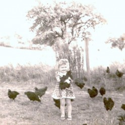 The Little Girl and Her Little Black Hens