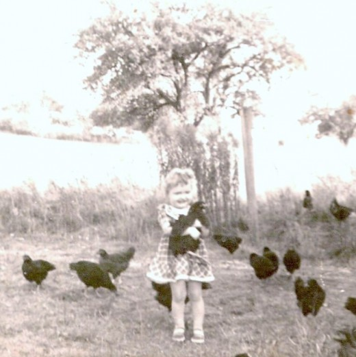 This is me. I loved those little black hens. My mom told me how she refused to let me take one to bed with me.