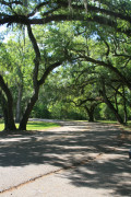 Fountainebleau State Park, Mandeville, Louisiana - A Review
