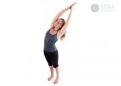 Yoga for Beginners 101: Fall Breeze for Weeks 44-45
