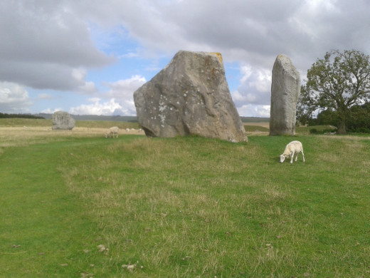 The Cove, Avebury, with sheep