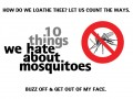 How to Stop Mosquitoes Biting