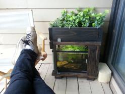 Has anyone tried aquaponics on balcony?