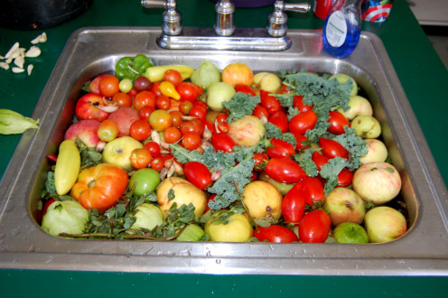 All Organic Fruits and Vegetables Ready to Bet Turned into Kale Juice