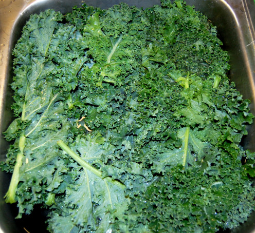 Kale for Kale Juice