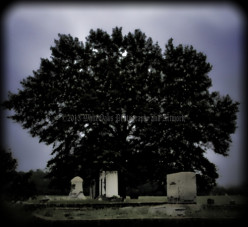 Cemeteries and the Paranormal