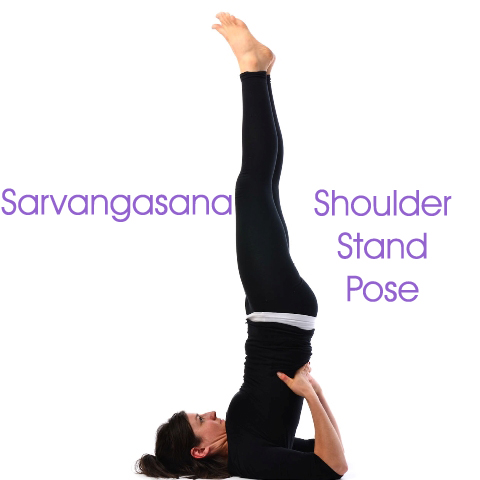 Hips are higher than the heart, and the heart is higher than the head which helps detox. houlder Stand Pose, inversion, good for thyroid problems, diabetes, hormonal problems, improves digestion, reduction in fats & obesity.