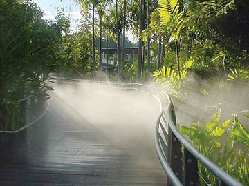 The Rainforest and Fern Gully at Roma Street Parklands. Image by the Visitbrisbane.com.au