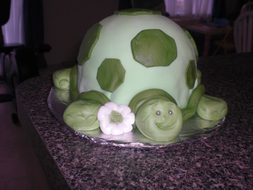 I think this was my first turtle cake, and my favorite one.