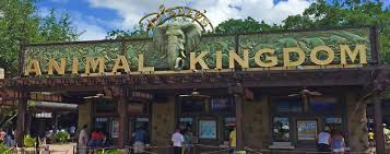 Animal Kingdoms grand entrance during the Spring