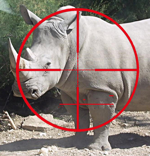 Illustration of white rhino targeted, … derived by R. G. Kernodle from Creative Commons source images.