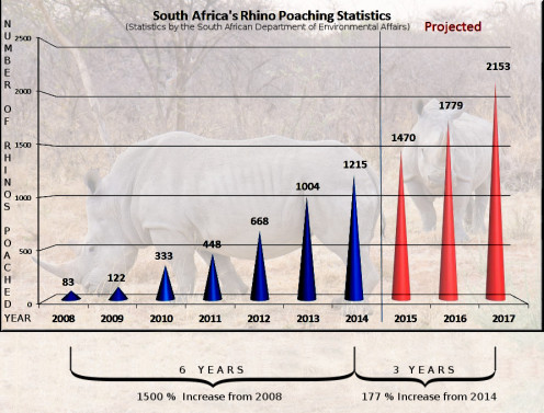 Illustration of rhino poaching statistics adapted by R.G. Kernodle from Peace Parks Foundation graph, embellished with white rhino photo from Wikipedia, plus added textual clarifications.