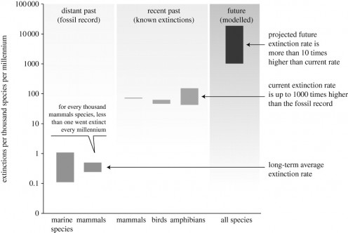 Extinction rate chart from Robert M. May (2009). Ecological Science And Tomorrow's World, PHILOSOPHICAL TRANSACTIONS B, Volume 365, Issue 1537, p 41-47.