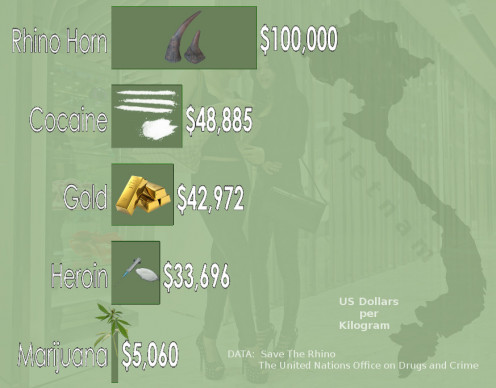 Illustration, compiled by R.G. Kernodle, comparing current black-market prices of rhino horn, cocaine, heroin, and marijuana, based on United Nations data and source images from the Creative Commons.