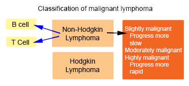 Classification of Non-Hodgkin Lymphoma