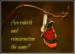 Reincarnation And Rebirth