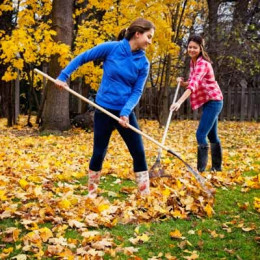 Raking leaves is a good workout.