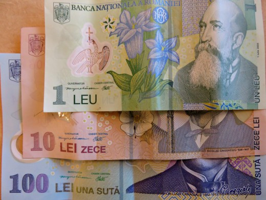 The Romanian currency is the leu (RON)