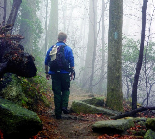 All of the national parks around the Shenandoah Valley have extensive hiking trails including the Appalachian Trail.