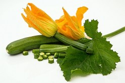Benefits Of Eating Courgettes