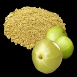Amla Fruit and Powder