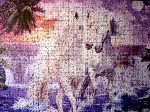 Animals are a popular puzzle to assemble.
