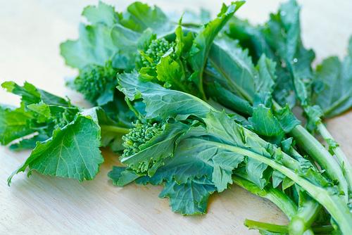 Rapini / Broccoli Rabe
