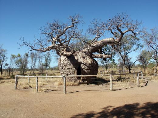 Taken in Western Australia.