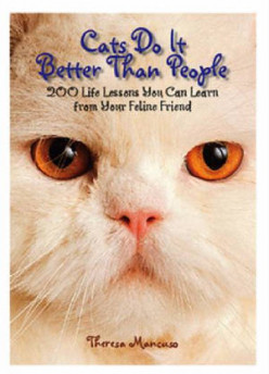 Cats and cat stories are popular.
