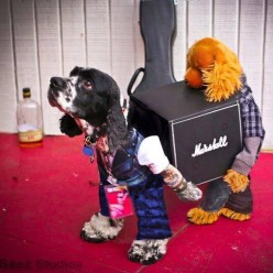SCI FI HALLOWEEN COSTUMES - For Your Dog