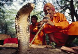 Snake charmer; largely outlawed these days