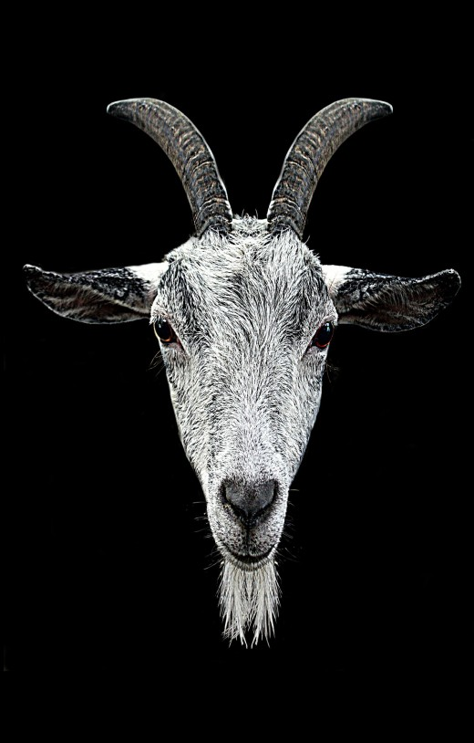 The Devil is often portrayed as a goat's head