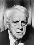 "Robert Frost's ""Bereft"""