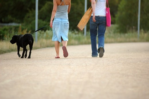 Women walking their dog using a leash.