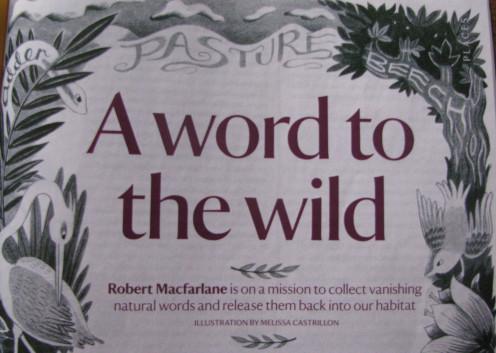 Pasture, Adder, Beech: Irrelevant words?