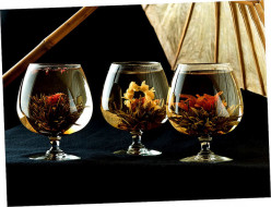 Ten Beautiful and Unusual Teas to Try