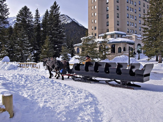 Horse sled at Lake Louise.