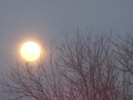 Desert moon casts its spell...