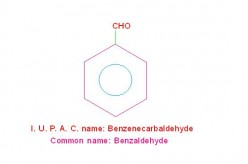 Lucid Guideline For I.U.P.A.C. Nomenclature Of Organic Compounds: Part-5: