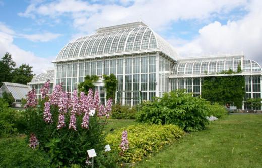 Botanical Garden Riga
