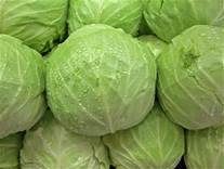 Nice firm cabbages, good start to a meal!