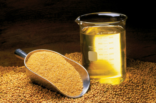 Soybean oil, meal and beans.