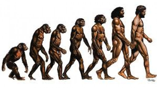 man's depiction of evolution does not explain the races.