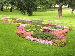 A flowerbed