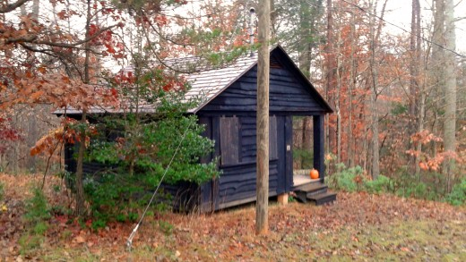 Pagan wet dream-- just move me in! This was my cabin for the retreat.